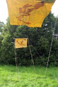 Fiona MacDonald - Kites, flying