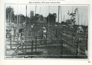 Abigail Reynolds - maze 1974